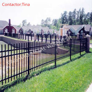 Residential Ornamental Steel Fence (XM3-31) pictures & photos