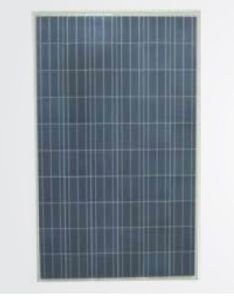 Csun260-60p High Efficency Polycrystalline PV Panel