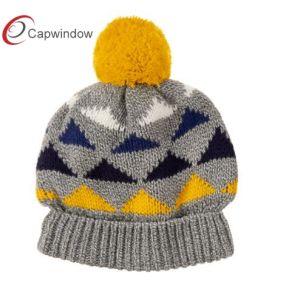 Warm Beanie Winter OEM Cap/Hat (17085) pictures & photos