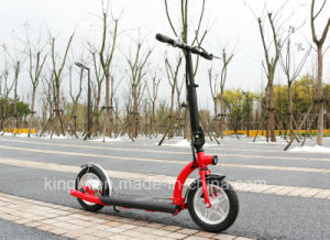 Factory New Two Wheel Self Balancing E Scooter (ES-1201) pictures & photos