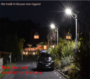 30W New New Zealand Realistic Picture Solar Light pictures & photos