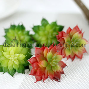 Decorative Plant Natural Touch Artificial Succulents Artificial Flower (SW17671)