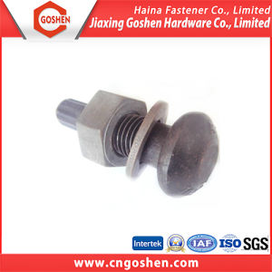 Black High Strength Steel Button Head Bolt with Nut Washer pictures & photos