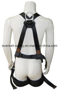 Full Body Harness with Waist Belt (EW0113H) pictures & photos