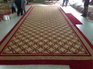 High Quality Hand Tufted Wool Carpet pictures & photos