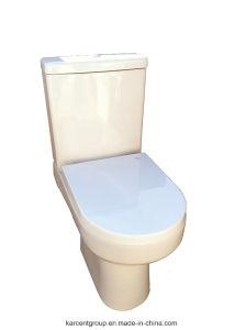 Two Piece Ceramic Toilet Washdown Toilet Water Closet Wc 10136 pictures & photos