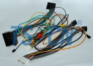 Customized Automotive Cable Car Audio Harness pictures & photos