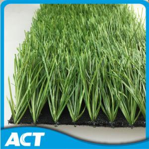 Artificial Grass for Outdoor Football Artificial Grass W50 pictures & photos