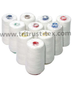 Polyester Sewing Thread (50s/2) pictures & photos