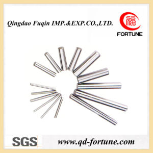 Export Pin Rollers for Bearings pictures & photos