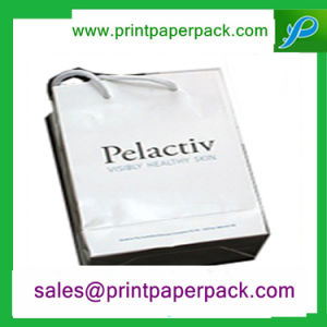 OEM Fashion Promotional Paper Carrier Bag pictures & photos