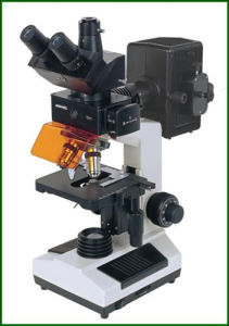 Flurescent Microscope with CCD and Camera Wn-FM107 pictures & photos