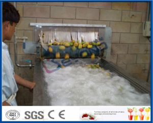 mango juice mango pulp processing line pictures & photos