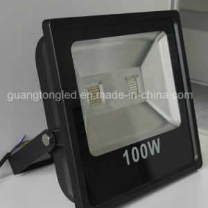 Best Selling 20W/30W LED Outdoor Light LED Floodlight pictures & photos