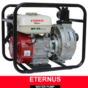 Automatic DC Water Pump (WP30) pictures & photos