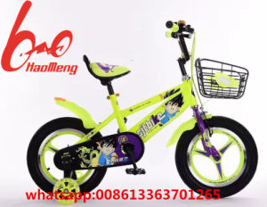 2017 Painting Steel Frame Balance Kids Bicycle/Alloy Wheel pictures & photos