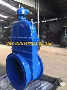 DIN Soft Seal Ductile Iron Flanged Gate Valve