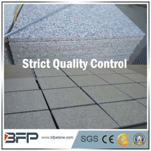Chinese Grey Granite Paving Stone with Popular Use in Outside Area pictures & photos