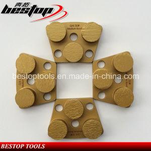 30# Medium Bond Concrete Grinding Tools for Australian Market pictures & photos