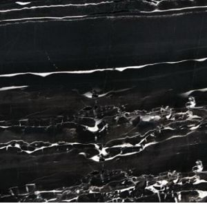 Silver Dragon Marble Slab Black Marble for Floor/Wall Tile pictures & photos