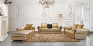 Modern Luxury Living Room Leather Sofa Set (HC3009) pictures & photos