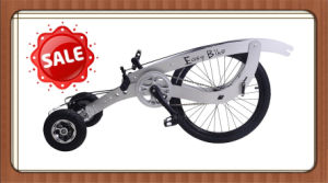 Aluminum Alloy Bike pictures & photos