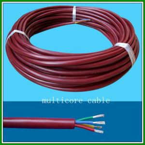 10kv 20kv 40kv High Voltage Cable Hv Silicone Rubber Cable pictures & photos