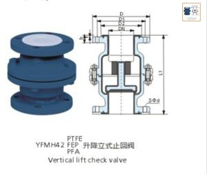 PFA Lined Lift Check Valve DIN Standard pictures & photos