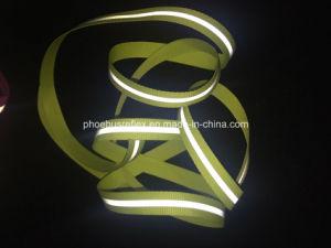 Garment Accessories pictures & photos
