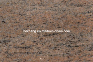 Polished India Raw Silk Granite Tiles pictures & photos