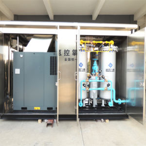PSA 99.999% Nitrogen Generator for Heat Treatment pictures & photos