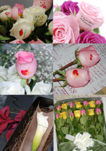 Mini Size Speaking Rose Flower Printer (UN-FL-MN103) pictures & photos