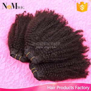 Wholesale Premium Brazilian Human Remy Hair with Hair Packaging Boxes/ Free Shipping pictures & photos