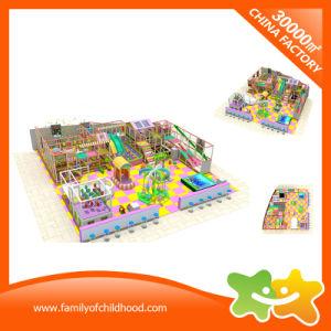 Galvanized Pipe Children Indoor Play Center Supply Soft Playground pictures & photos