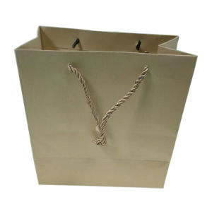 Printed Paper Shopping Bags (FP11055) pictures & photos