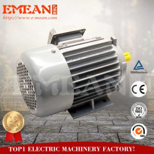 Y Series Small Three-Phase AC Electric Motor 220V pictures & photos