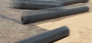 30-30 Kn/M PP Biaxial Geogrid pictures & photos