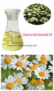 Certificated Organic Natural Roman Chamomile Essential Oil OEM/ODM with Factory Price pictures & photos