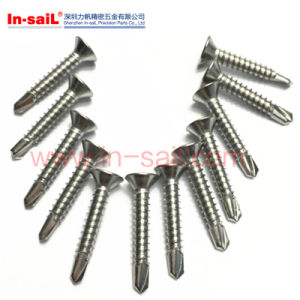 DIN Standarded Cross-Slotted Head Self -Tapping Screw pictures & photos
