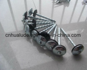 Galvanized Roofing Nails with Umbrella Head pictures & photos