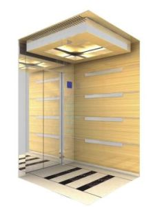 Villa Passenger Elevator with Good Price