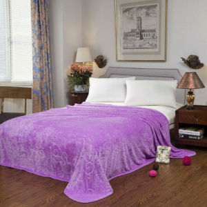 100% Polyester 150d/288f Flannel Fleece Blanket (HZS---336)