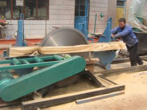China Supply Wood Plant Use Circular Sawing Mill with Ce pictures & photos
