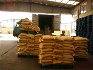 Professional Service Food Additives Powder Dextrose pictures & photos
