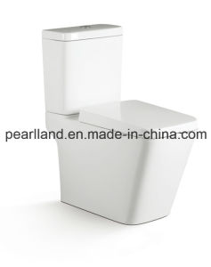 Standing Floor Toilet (CE-T2202) pictures & photos