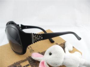 Acetate Sunglasses, Cr-39, UV400, Ym01-0137
