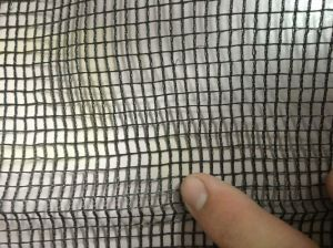 Black Color Anti Hail Net Olive Net for Agriculture pictures & photos