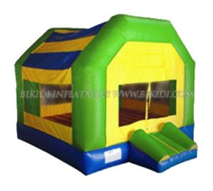 Inflatable Bouncer (B1009) pictures & photos