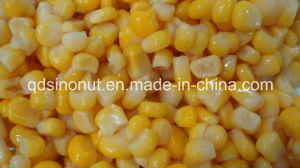 Hot Sales Season Canned Sweet Corn (HACCP, ISO, BRC, FDA) pictures & photos