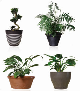 Recycled Biodegradable Plastic Flower Pot